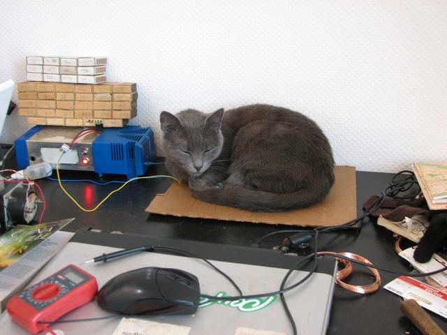 2012.04.01-cat_heater7.jpg