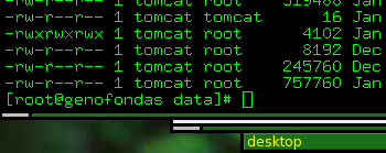 root@genofondas